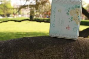 """Woche 4 - Bild 2: Dose """"La vie en rose"""""""